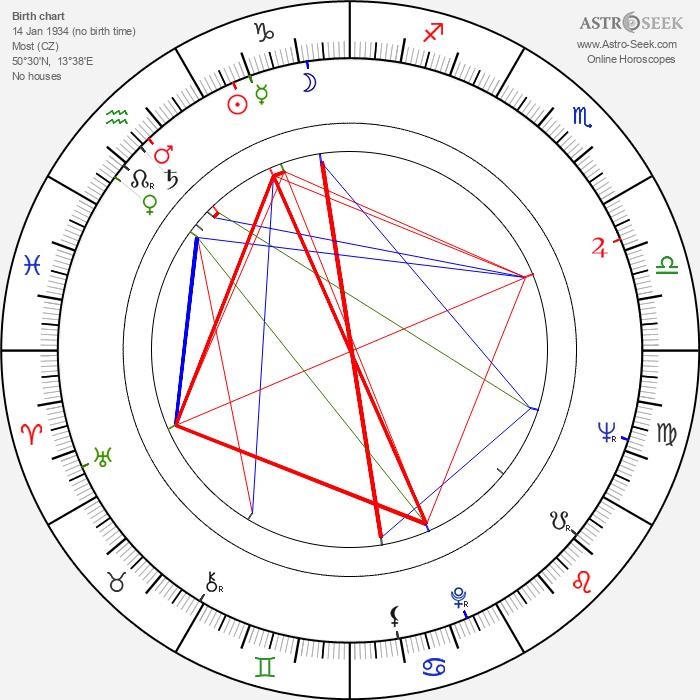 Dana Němcová - Astrology Natal Birth Chart