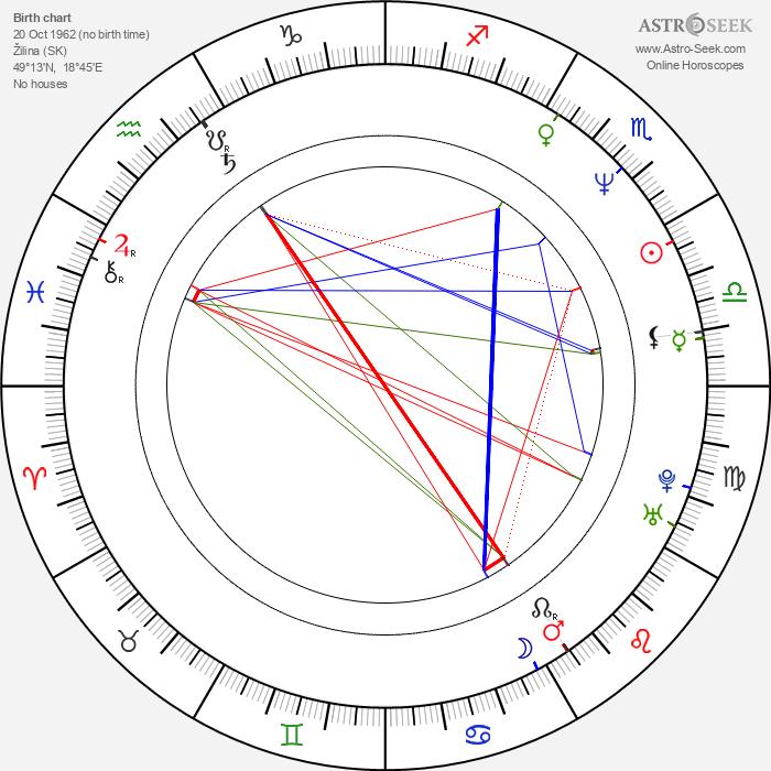 Martin Šulík - Astrology Natal Birth Chart