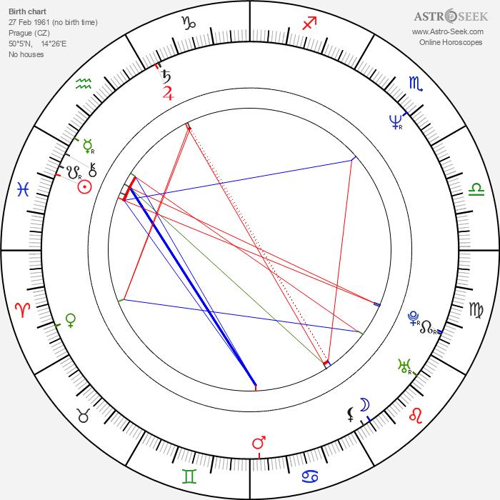 Michaela Pavlátová - Astrology Natal Birth Chart