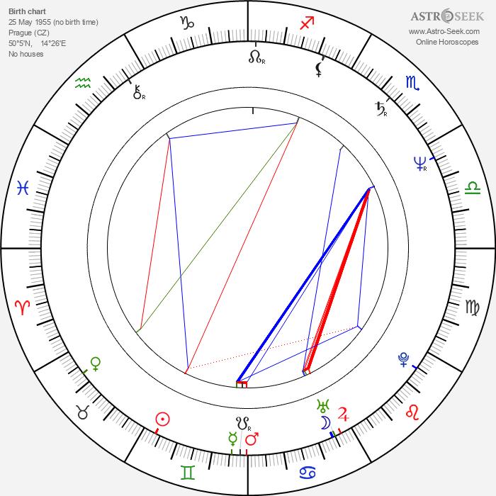 Michal Hejný - Astrology Natal Birth Chart