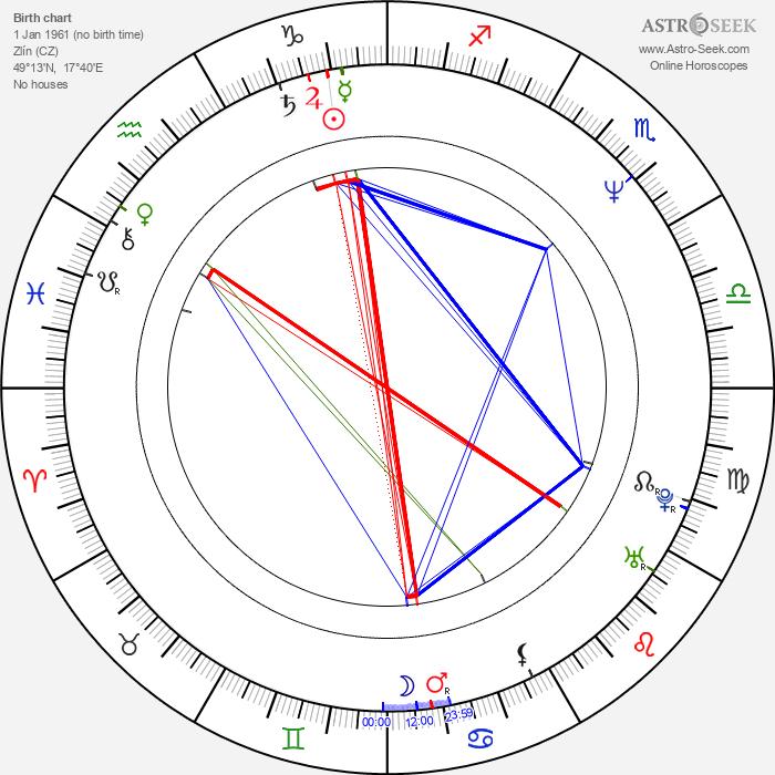 Michal Vavruša - Astrology Natal Birth Chart