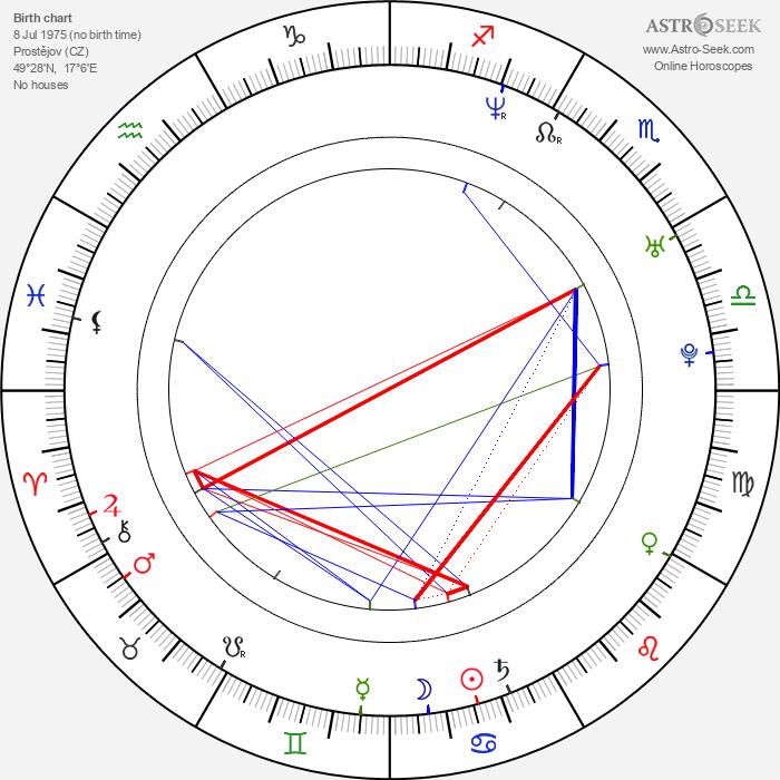 Ondřej Šípek - Astrology Natal Birth Chart