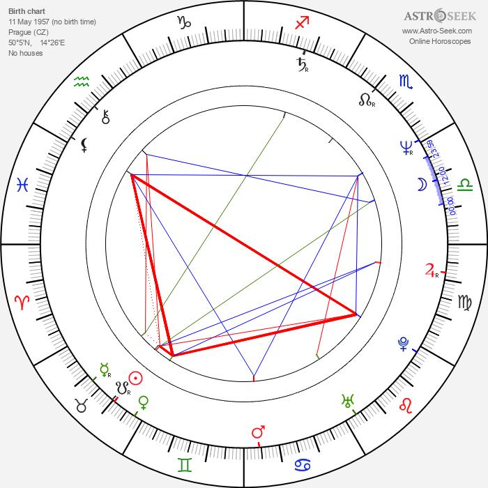 Petr Nikolaev - Astrology Natal Birth Chart