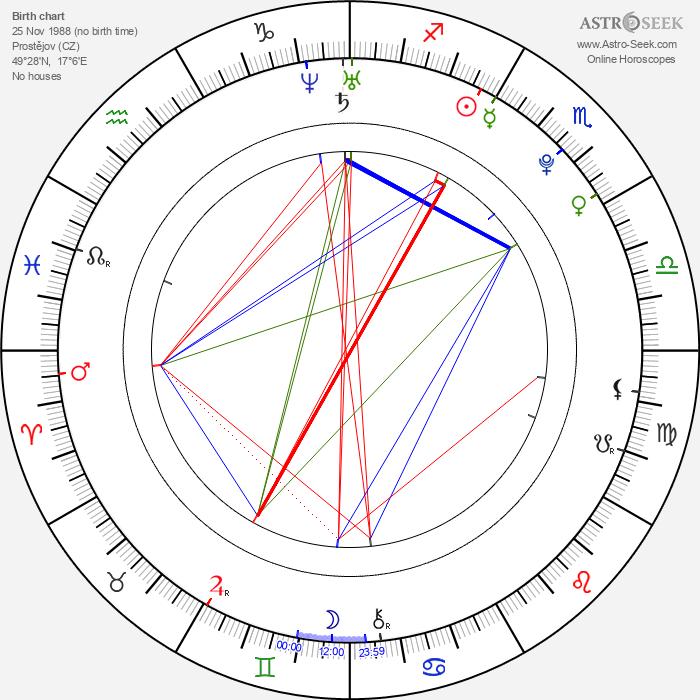 Radek Meidl - Astrology Natal Birth Chart