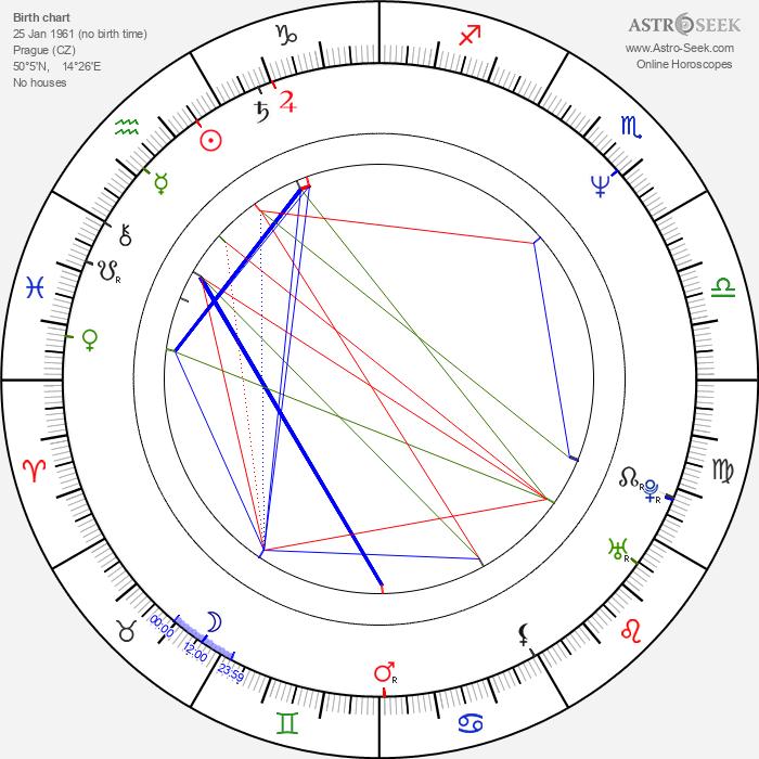 Richard Medek - Astrology Natal Birth Chart