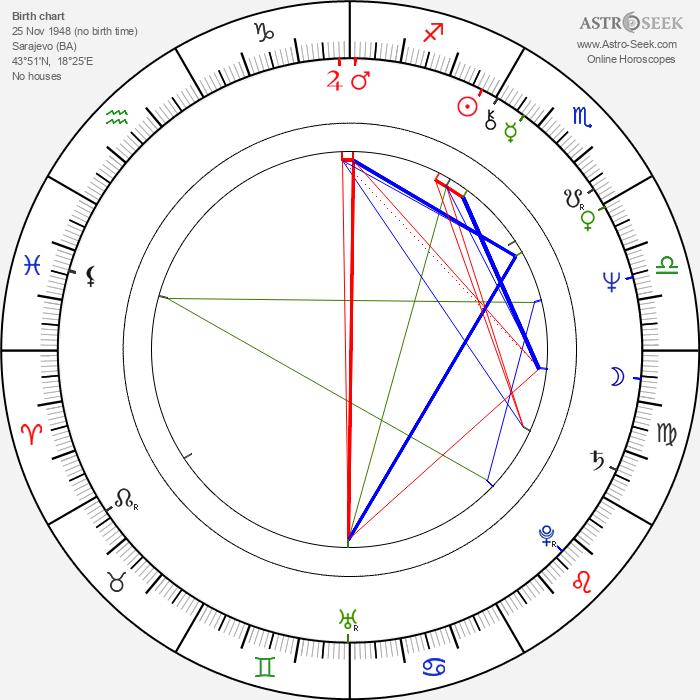 Vesna Malohodzic - Astrology Natal Birth Chart