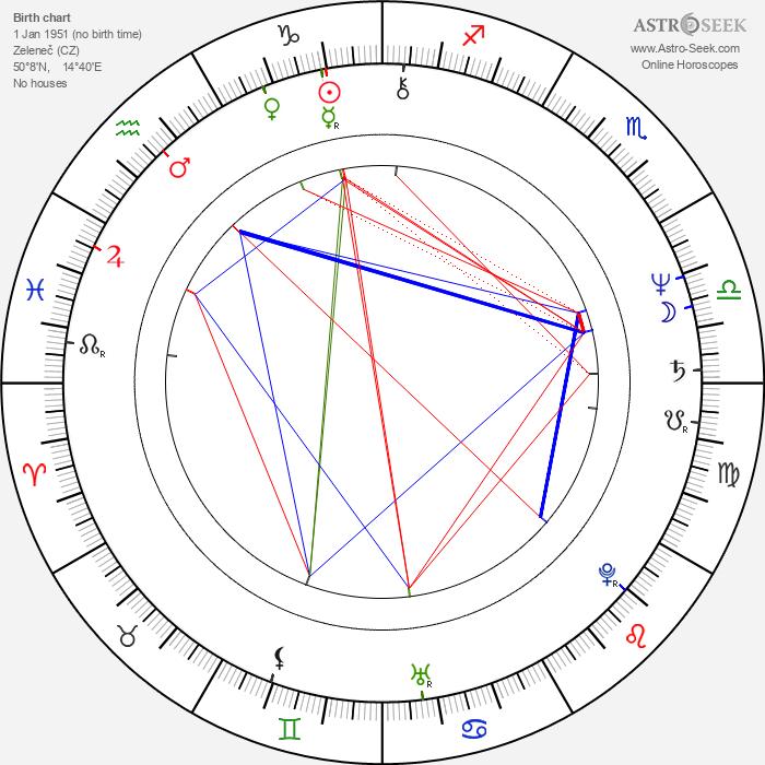 Vít Bednárik - Astrology Natal Birth Chart