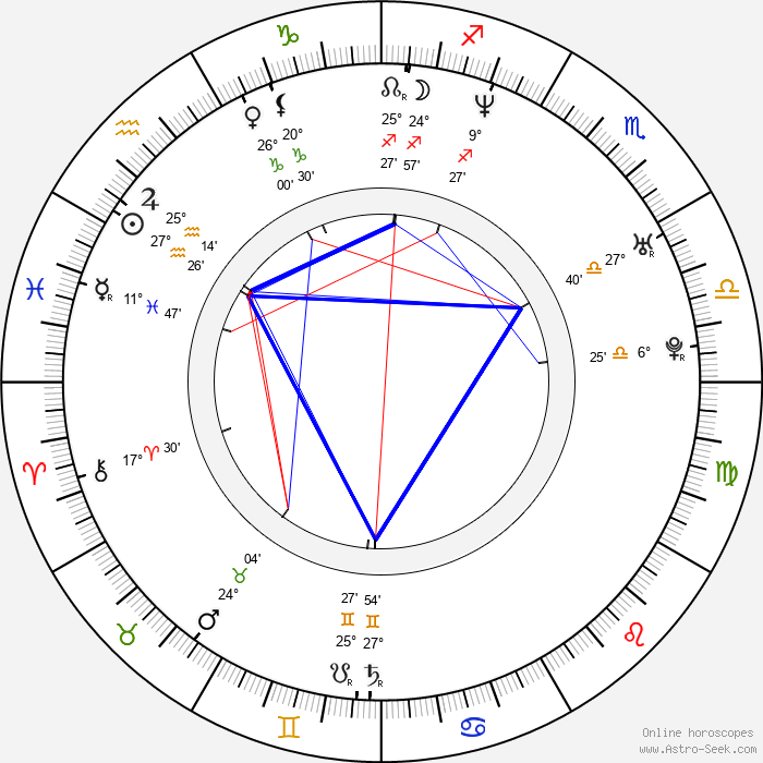 Johnny Nguyen - Birth horoscope chart