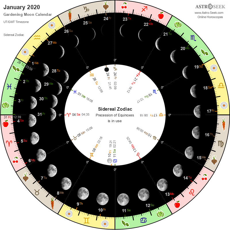 Biodynamic Gardening Moon Calendar - January 2020