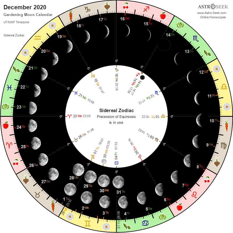 Biodynamic Gardening Moon Calendar - December 2020