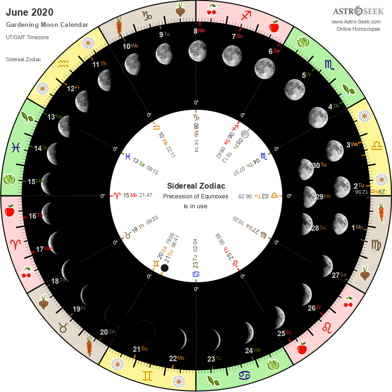 Biodynamic Gardening Moon Calendar - June 2020