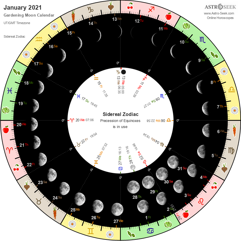 Biodynamic Gardening Moon Calendar - January 2021