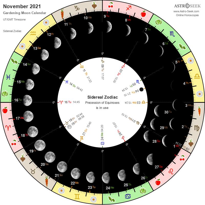 Biodynamic Gardening Moon Calendar - November 2021