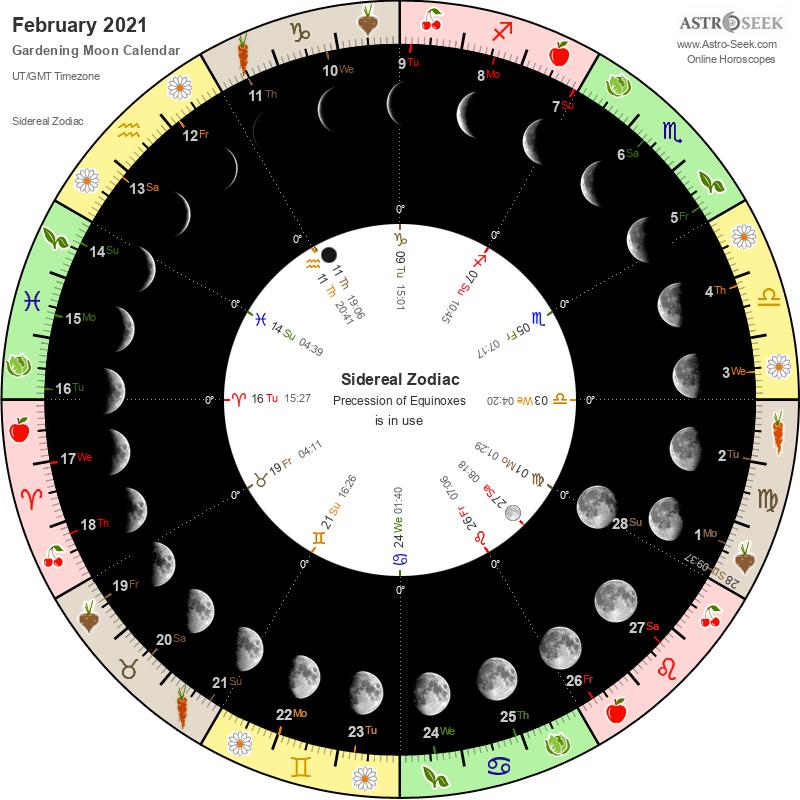 Biodynamic Gardening Moon Calendar - February 2021